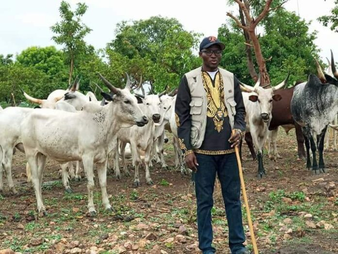 How an ex-Niger Delta militant became a herder in Nasarawa